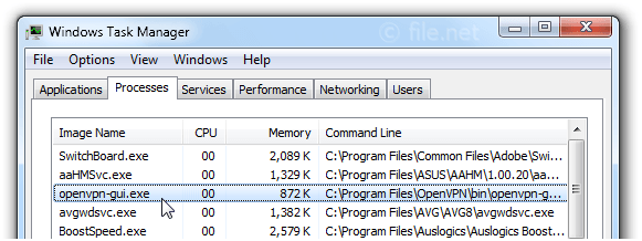 Windows Task Manager with openvpn-gui