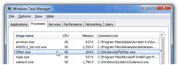 Windows Task Manager with Other