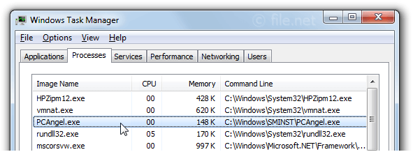 Windows Task Manager with PCAngel