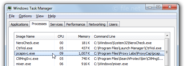 Windows Task Manager with pcapsvc