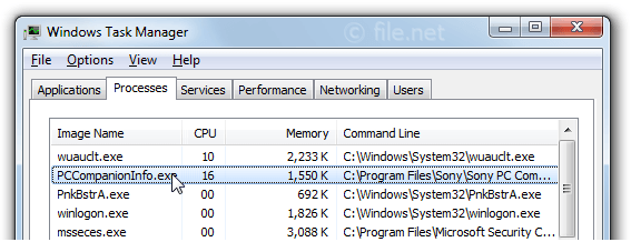 Windows Task Manager with PCCompanionInfo