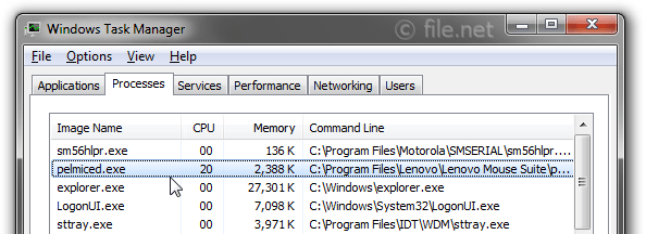 Windows Task Manager with pelmiced
