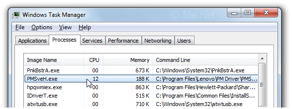 Windows Task Manager with PMSveH