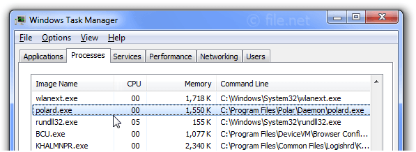 Windows Task Manager with polard