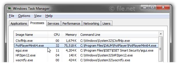 PotPlayerMini64 exe Windows process - What is it?