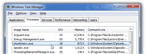 Windows Task Manager with ptumlcmsvc