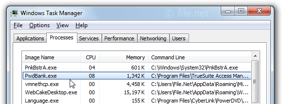Windows Task Manager with PwdBank