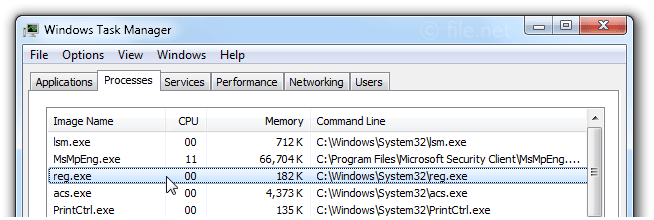 Windows Task Manager with Reg