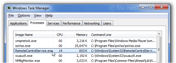Windows Task Manager with RemoteControlService