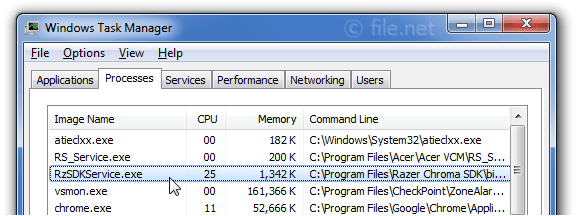 RzSDKService exe Windows process - What is it?