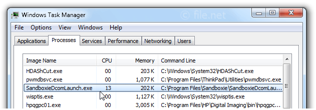 Windows Task Manager with SandboxieDcomLaunch