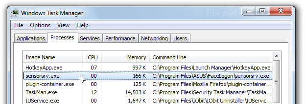 Windows Task Manager with sensorsrv
