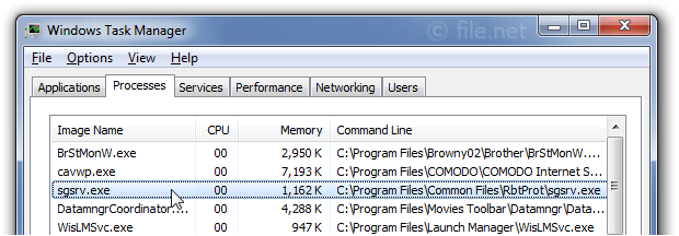 Windows Task Manager with sgsrv