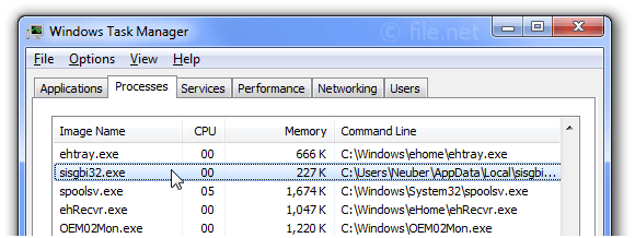 Windows Task Manager with sisgbi32
