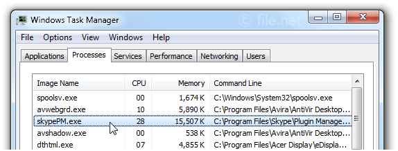 Windows Task Manager with skypePM