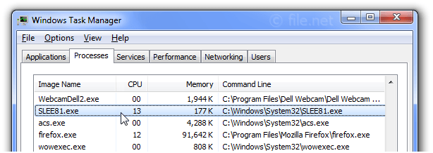 Windows Task Manager with SLEE81