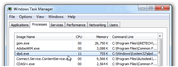 Windows Task Manager with slpd