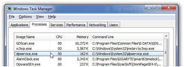 Windows Task Manager with slpservice