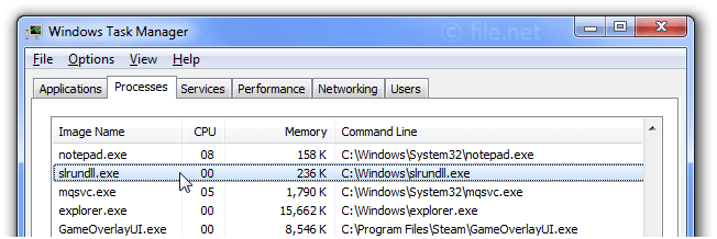 Windows Task Manager with slrundll