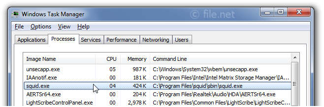 squid exe Windows process - What is it?