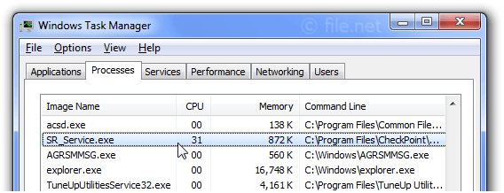 Windows Task Manager with SR_Service