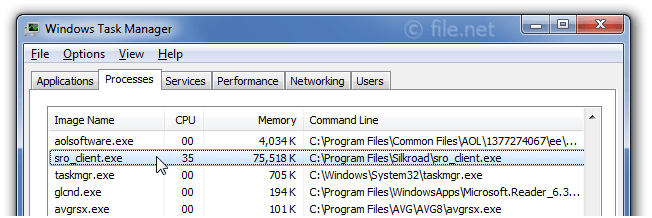 Windows Task Manager with sro_client