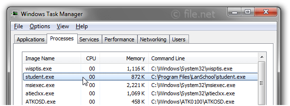 Windows Task Manager with student