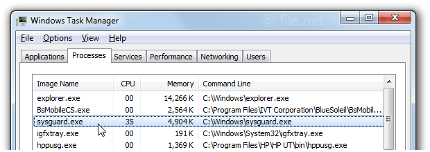 Windows Task Manager with sysguard