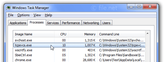 Windows Task Manager with tcpsvcs