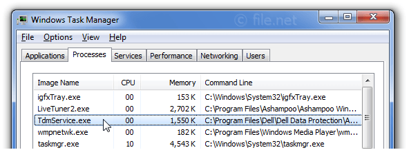 Windows Task Manager with TdmService