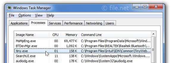 Tiny Web Server Windows 10