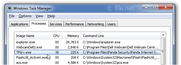 Windows Task Manager with TPSrv
