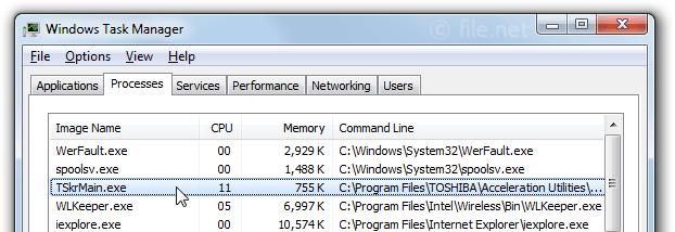 TSkrMain.exe Windows process - What is it?