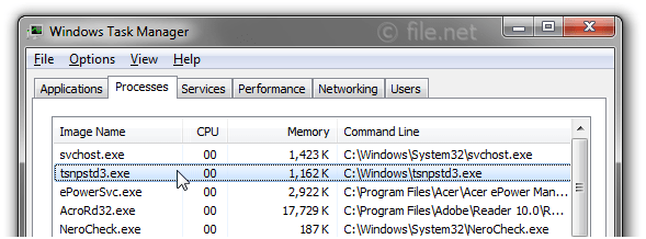 Windows Task Manager with tsnpstd3
