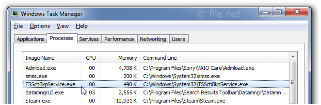 Windows Task Manager with TSSchBkpService