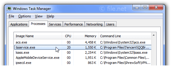 Windows Task Manager with tsservice
