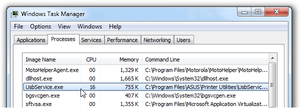 Windows Task Manager with UsbService