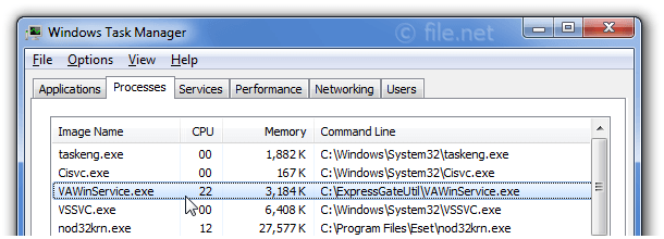 Windows Task Manager with VAWinService