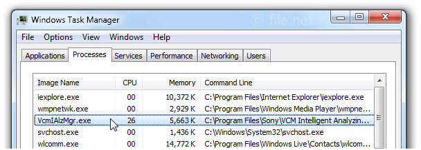 Windows Task Manager with VcmIAlzMgr
