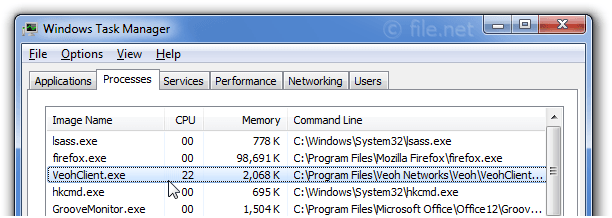 Windows Task Manager with VeohClient