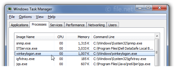 Windows Task Manager with winkeylogon