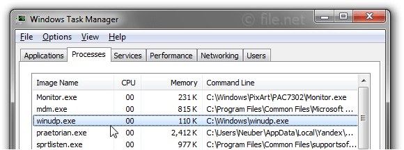 Windows Task Manager with winudp