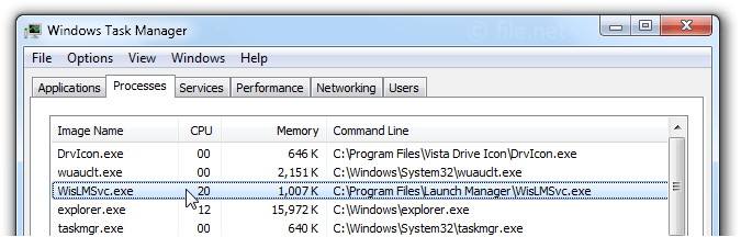 Windows Task Manager with WisLMSvc