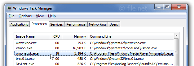Windows Task Manager with wmpnetwk
