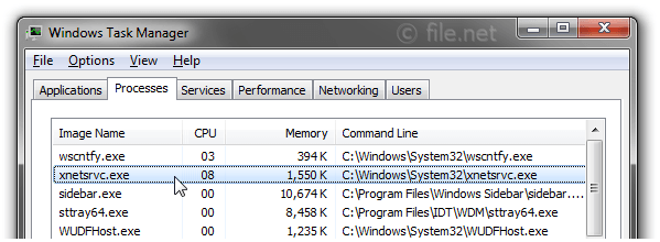 Windows Task Manager with xnetsrvc